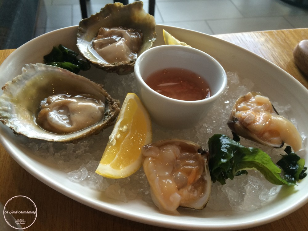 Bluff Oysters & Diamond Shell Clams